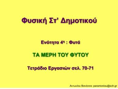 PAROYSIASH FYTON