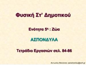 aspondila