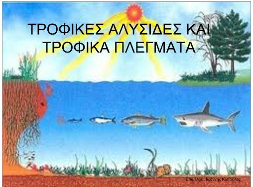 FYSIKI_OIKOSISTIMA1