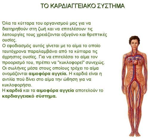 καρδιαγγειακο συστημα