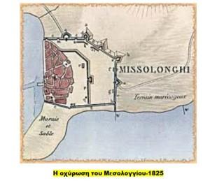 MESOLOGI3