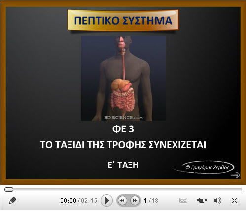 Πεπτικό Σύστημα2