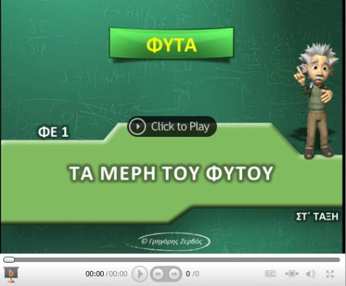 MERH_FYTOY1