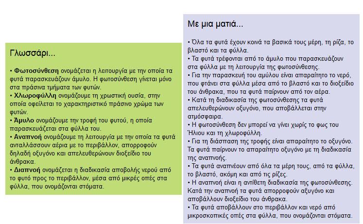 epanalipsi_FYTA1